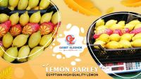 lemon Barley