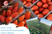 Fresh strawberries, red strawberries, strawberries