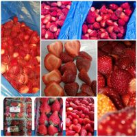 Egyptian strawberry (fresh and frozen)