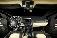 Luxury individual auto leather interior