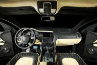 Luxury leather auto interior