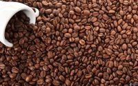 grade A Robusta Coffee Beans
