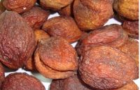 Natural Dried Apricot with Pits, Conventional