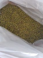 NEW CROP green mung bean