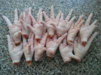 Clean Chicken Paws  Fresh