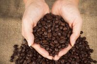 ROASTED ROBUSTA AND ARABICA COFFEE BEANS