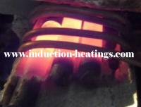 Easy Maintainability induction melting machine