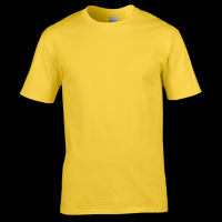 High Quality Polyester Tshirts