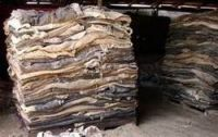 Dry Salted Donkey Skin, Cow Skin (Hides).