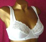 OEM Brassieres bras and panties sexy underwear