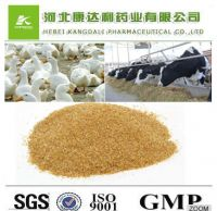 99% high quality raw powder Choline chloride