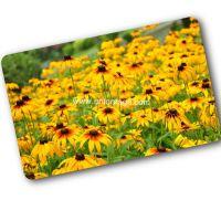 Pvc smart rfid EM4205 employee card