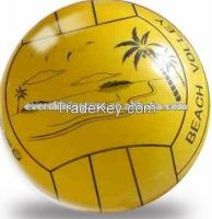 Exciting Beach Volley Ball