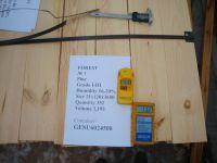 KD pine sawn timber