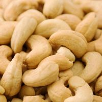Almond nut, Betel nuts, Brazilian nut, Cashew nuts,  Chestnuts,Ginkgo nuts, Hazelnut, Macadamia nut, Peanuts, pecant nuts   Pine nuts  , pistachio nut, preserved nuts , walnuts.
