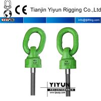 Swivel hoist ring/ rigging hardware/lifting point