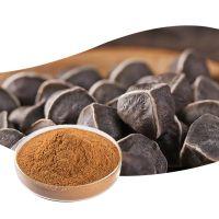 Moringa Oleifera Extract ,Kratom Powder extract, Herbal Tea,Herbal oil,