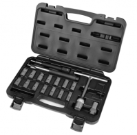 19 Pcs Diesel Injector / Injector Seat Cleaner Set