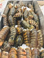 Wholesale Crab Frozen Half Cut Crab High Quality