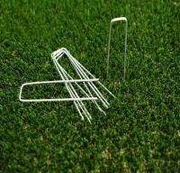 Cheap galvanized U shape sod staples