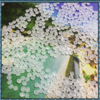 virgin&recycled LLDPE granules