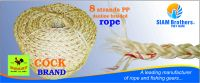 Polypropylene (PP) Rope --- CHEAP and HIGH QUALITY