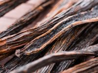 High quality Vanilla beans for export.