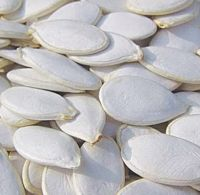 Shine Skin Snow White Pumpkin Seeds In Shell For Sale