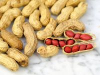 Philippines High Quality peanuts / peanut with best price