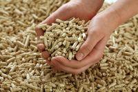 USA Fuel Wood Pellets, Pine Wood Pellet, Spruce Wood Pellets, Oak Wood Pellets From France