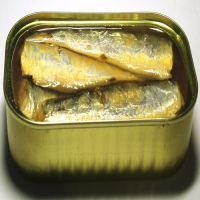 Canned mackerel in oil, canned sardine in oil, canned tuna in oil, Dried and Frozen Horse Mackerel Fish/Frozen Squid/Salmon Fish/Frozen Fish