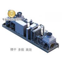 D-type membrane nitrogen generation gas-injection system