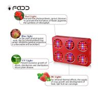 Hot promotion 1260W LED grow light Shenzhen manufacturers Greenhouse plants light