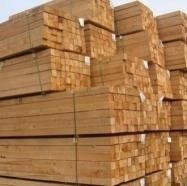 Long Hardwood Lumber and Sawn Lumber & Construction Timber , ntire Logs of Trees in Nature for Imported Wood Raw Materials , Lumber/Sawn Timber/Acacia/Hardwood/Wood