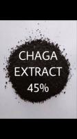 EXTRACT CHAGA MUSHROOMS SUBLIMATED