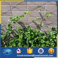 Stainless steel vertical green wall system