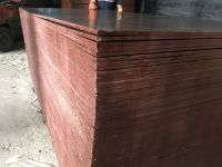 12mm Vietnamese Film Faced Plywood Water Proof