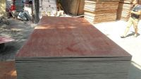 Cheap Packing Commercial Plywood 1220x2440mm