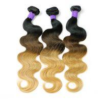 Ombre Brazilian Body Wave Hair 3 Tone Colors 1B/427