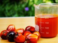 We are Major Exporter of Red Palm Oil