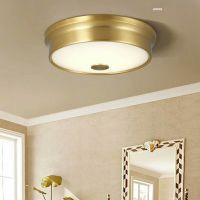 ceiling lignt / home lighting / LED lighting