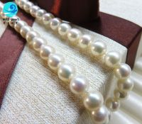 chinese freshwater real pearl strand necklace wedding decoration,8-9mm size ,high luster