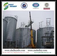 5000t flat bottom steel silo for grain storage