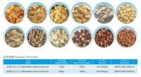 Advanced Corn flakes Breakfast Cereal machine