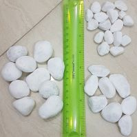 White Pebble Stone for Decoration in garden and home