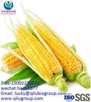 99% monosodium glutamate MSG from Qilu Group