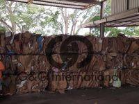 OCC Cardboard 11