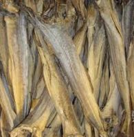 Quality Dried StockFish from Thailand