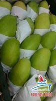 Viet Nam Fresh Mango