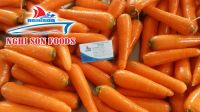 Fresh Orange Carrot from Viet Nam with High Quality-Wholesale Price.